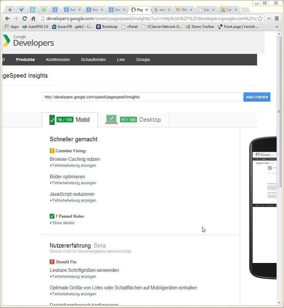 Screenshot der Google PageSpeed Insights Seite - nicht responsive