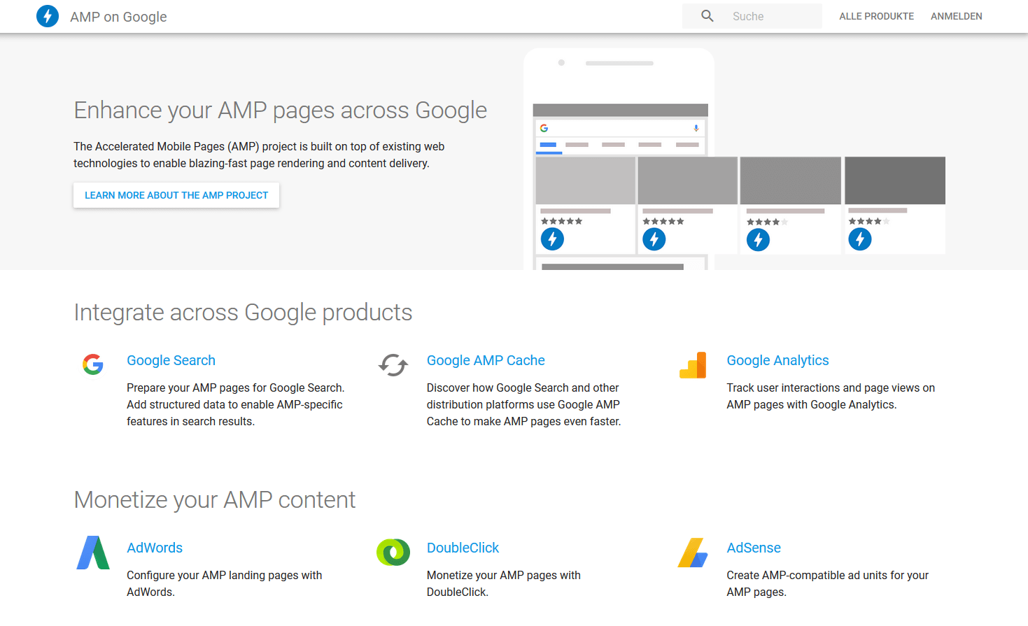 Screenshot Google AMP Website